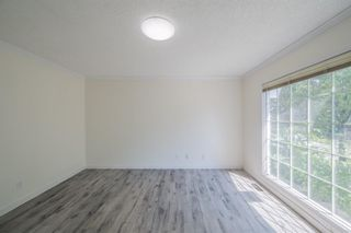 Photo 21: 12023 Candiac Road SW in Calgary: Canyon Meadows Detached for sale : MLS®# A1128675