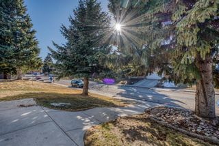 Photo 4: 543 Lake Newell Crescent SE in Calgary: Lake Bonavista Detached for sale : MLS®# A1081450