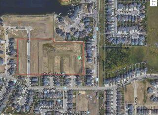 Photo 50: 4419 Suzanna Crescent in Edmonton: Zone 53 House for sale : MLS®# E4211290