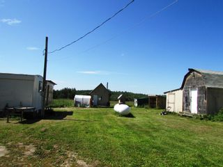 Photo 12: 3941 247 Road in Kiskatinaw: BCNREB Out of Area Manufactured Home for sale (Fort St. John (Zone 60))  : MLS®# R2327027
