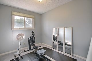 Photo 39: 9832 187 Street in Edmonton: Zone 20 House for sale : MLS®# E4253744