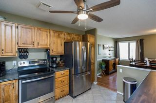 Photo 11: 71 Strand Circle in Winnipeg: River Park South Residential for sale (2F)  : MLS®# 202105676