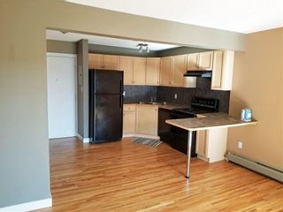 Photo 6: 306 112 23 Avenue SW in Calgary: Mission Apartment for sale : MLS®# C4295626