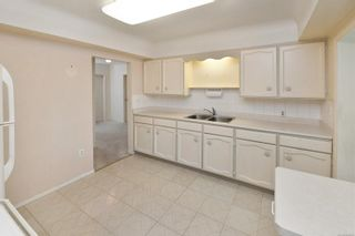 Photo 10: 1960 CARNARVON St in : SE Camosun House for sale (Saanich East)  : MLS®# 884485