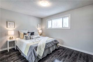 Photo 16: 76 Loganberry Cres in Toronto: Hillcrest Village Freehold for sale (Toronto C15)  : MLS®# C3710592