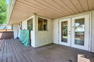 Photo 25: 10443 Wapiti Drive SE in Calgary: Willow Park Detached for sale : MLS®# A1128951
