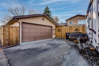 Photo 30: 8 Mckenna Road SE in Calgary: McKenzie Lake Detached for sale : MLS®# A1049064