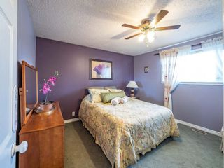 Photo 15: 223 Tanner Drive SE: Airdrie Detached for sale : MLS®# A1101335