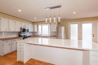 Photo 20: 12908 66 Avenue in Edmonton: Zone 15 House for sale : MLS®# E4239987