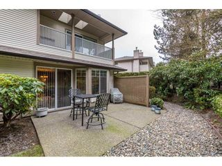 """Photo 31: 159 20391 96 Avenue in Langley: Walnut Grove Townhouse for sale in """"Chelsea Green"""" : MLS®# R2539668"""