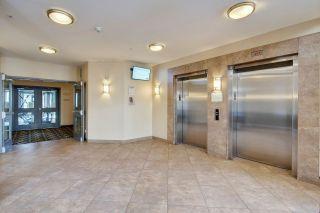 Photo 30: 448 10121 80 Avenue NW in Edmonton: Zone 17 Condo for sale : MLS®# E4230535