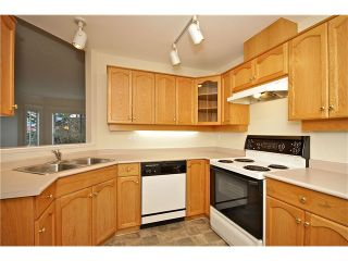 Photo 3: 206 12464 191B Street in Pitt Meadows: Mid Meadows Condo for sale : MLS®# V994301