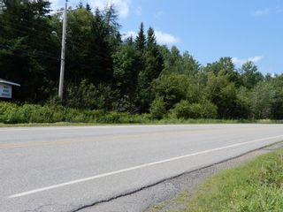 Photo 3: Lot 3 Highway 376 Drive in Durham: 108-Rural Pictou County Vacant Land for sale (Northern Region)  : MLS®# 202117803