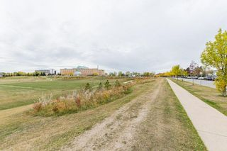 Photo 43: 63 603 Youville Drive E in Edmonton: Zone 29 Townhouse for sale : MLS®# E4266368