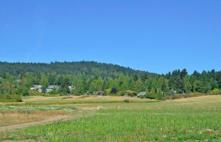 Photo 32: 1928 Barrett Dr in North Saanich: NS Dean Park House for sale : MLS®# 887124