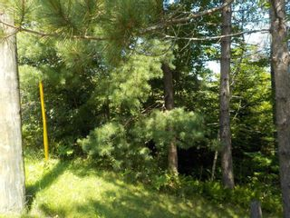 Photo 9: Lot M-1 127 Charleswood Drive in Windsor Junction: 30-Waverley, Fall River, Oakfield Vacant Land for sale (Halifax-Dartmouth)  : MLS®# 202121061