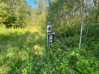 Photo 4: 73 52122 RGE RD 210: Rural Strathcona County Rural Land/Vacant Lot for sale : MLS®# E4252259