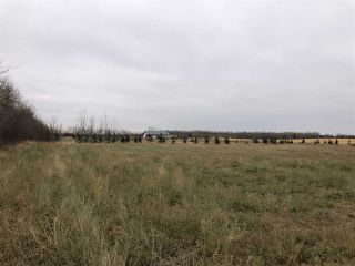Photo 18: TWP RD 583 Range Rd 271: Rural Westlock County Rural Land/Vacant Lot for sale : MLS®# E4218433