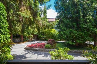 Photo 16: 211 1005 McKenzie Ave in Saanich: SE Quadra Condo for sale (Saanich East)  : MLS®# 843439