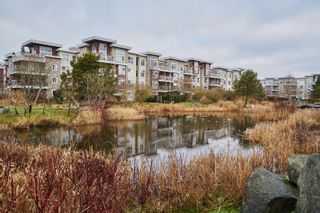 Photo 12: 216 5700 Andrews Road in Rivers Reach: Steveston South Home for sale ()  : MLS®# R2025689