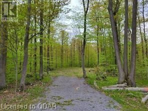 Photo 12: 1832 COUNTY RD. 40 Road in Quinte West: Vacant Land for sale : MLS®# 40154512