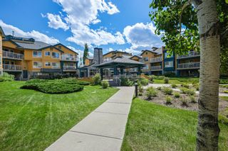 Photo 21: 320 25 Richard Place SW in Calgary: Lincoln Park Apartment for sale : MLS®# A1115963