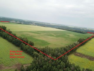 Photo 8: 27313 Twp Road 505: Rural Parkland County Rural Land/Vacant Lot for sale : MLS®# E4255712