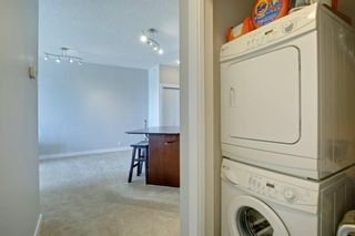 Photo 21: 1417 8710 HORTON Road SW in Calgary: Haysboro Apartment for sale : MLS®# A1091415