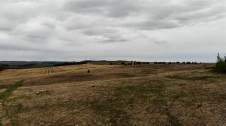 Photo 14: Viewmar Drive: Rural Ponoka County Land for sale : MLS®# C4288523