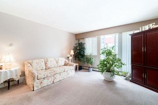 """Photo 5: 202 12096 222 Street in Maple Ridge: West Central Condo for sale in """"CANUCK PLAZA"""" : MLS®# R2591057"""