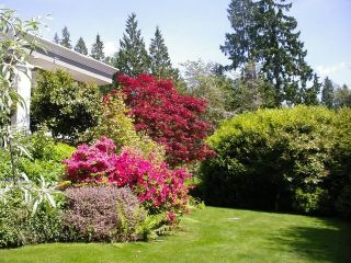 Photo 15: 1430 31ST Street in West Vancouver: Altamont House for sale : MLS®# R2541449