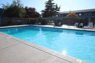 Photo 39: 55 3031 WILLIAMS ROAD in Richmond: Seafair Townhouse for sale : MLS®# R2584254