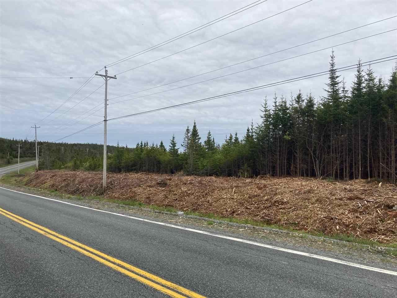 Photo 7: Photos: 1405 Highway 7 in Marie Joseph: 303-Guysborough County Vacant Land for sale (Highland Region)  : MLS®# 202010345
