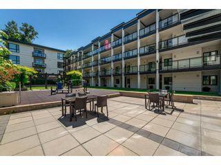 Photo 20: 105 14358 60 Avenue in Surrey: Sullivan Station Condo for sale : MLS®# R2278889