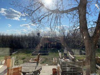 Photo 22: North Wiseton Acreage in Wiseton: Residential for sale : MLS®# SK854100