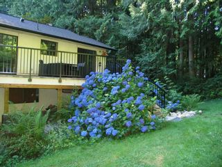 Photo 14: 12414 MCNUTT Road in Maple Ridge: Northeast House for sale : MLS®# R2560793