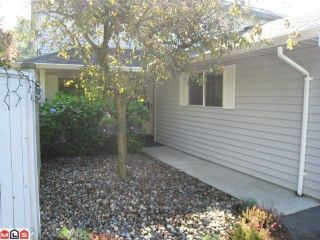 Photo 1: 6 33931 Marshall Road in Sharon Court: Central Abbotsford Home for sale ()  : MLS®# F1217794