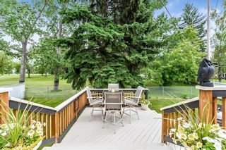 Photo 28: 184 MAPLE COURT Crescent SE in Calgary: Maple Ridge Detached for sale : MLS®# A1080744