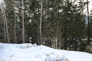 Photo 4: 33 2481 Squilax Anglemont Road in Lee Creek: Land Only for sale : MLS®# 10077079