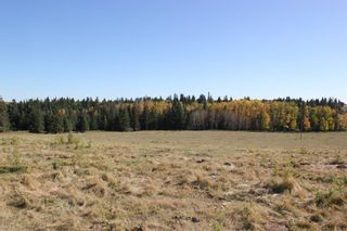 Photo 8: ON Township Road 355A: Rural Red Deer County Land for sale : MLS®# A1039276