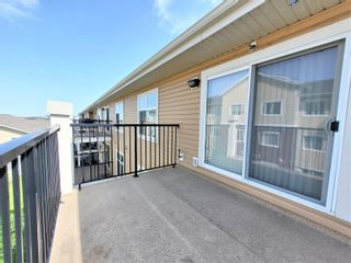 Photo 26: 438 6076 SCHONSEE Way in Edmonton: Zone 28 Condo for sale : MLS®# E4260047