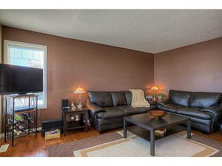 Photo 7: 111 Hillview Terrace: Strathmore Townhouse for sale : MLS®# C3601996