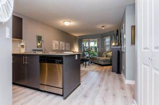 Photo 4: 102 8915 202 Street in Langley: Walnut Grove Condo for sale : MLS®# R2192394