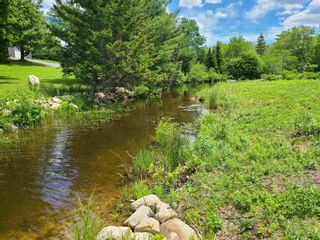 Photo 4: East Uniacke Road in Mount Uniacke: 105-East Hants/Colchester West Vacant Land for sale (Halifax-Dartmouth)  : MLS®# 202115648