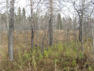 Photo 5: 3 miles east of Sundre in SUNDRE: Rural Mountain View County Rural Land for sale : MLS®# C3590774