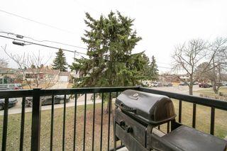 Photo 29: 208 7204 81 Avenue in Edmonton: Zone 17 Condo for sale : MLS®# E4255215