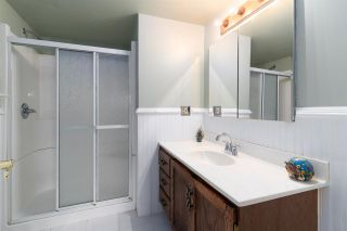 Photo 23: 4107 27 Avenue in Edmonton: Zone 29 House for sale : MLS®# E4244259