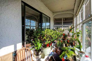 Photo 30: 3657 E PENDER Street in Vancouver: Renfrew VE House for sale (Vancouver East)  : MLS®# R2561375