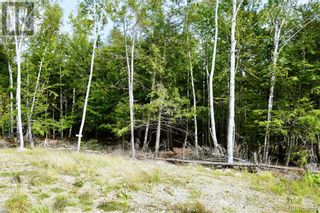 Photo 20: 2 Hills Point Estates in Oak Bay: Vacant Land for sale : MLS®# NB049865