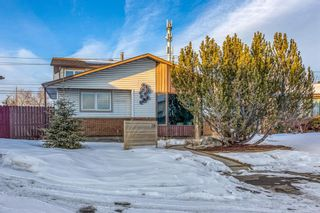 Main Photo: 220 Templeby Place NE in Calgary: Temple Detached for sale : MLS®# A1071773